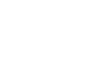 college-of-wisdom